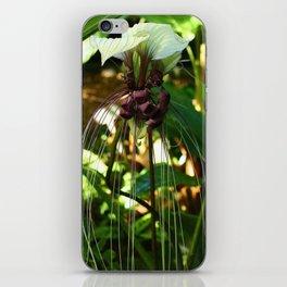 White Bat Flower iPhone Skin