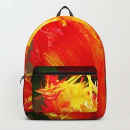 Curly Tulip With Vivid Red And Yellow Backpack