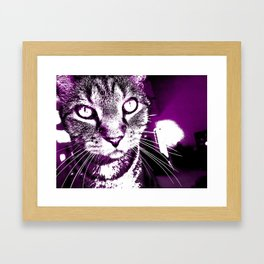 Purple Fierce Kitty Framed Art Print