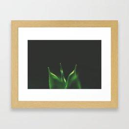Une Fleur Verte Framed Art Print