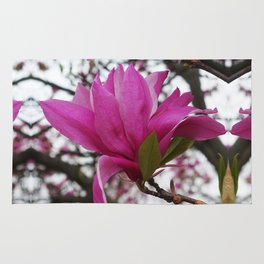 Magnolia sky Rug