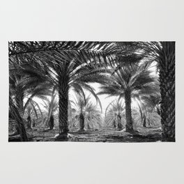 Vintage Palms Trees : Coachela Valley California 1937 Rug