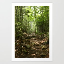 Forest Hike Art Print