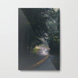 GREY - CONCRETE - ROAD - DAYLIGHT - JUNGLE - NATURE - PHOTOGRAPHY Metal Print