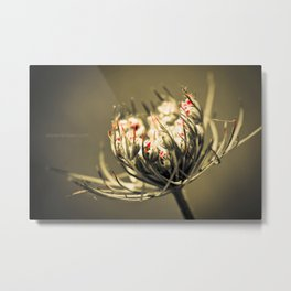 Love is much like a wild rose: beautiful and calm, but willing to draw blood in its defense. Metal Print