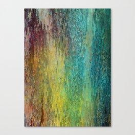 Pine bark Canvas Print
