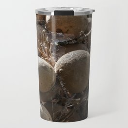 Cannonball Tree Fruit Travel Mug