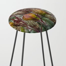 Prickly beauty Counter Stool