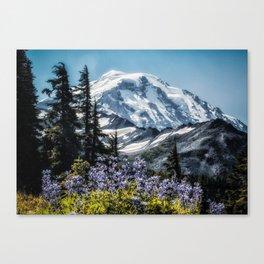 Scenic Art, Mt. Rainier, Mt. Rainier National Park, Spray Park Canvas Print