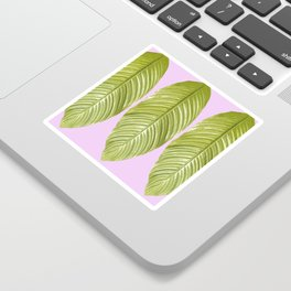 Three large green leaves on a pink background - vivid colors Sticker
