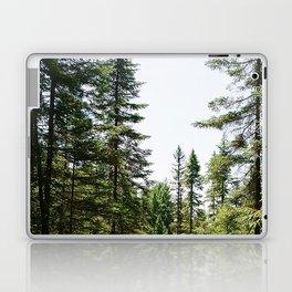 Spruce Bog Boardwalk Laptop & iPad Skin