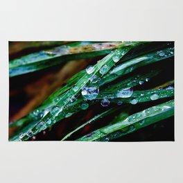Raindrop grass Rug