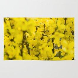 Yellow spring blooming Rug