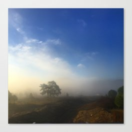 Landcape blues Canvas Print