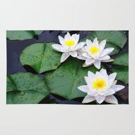 Lilly pad blossom  Rug