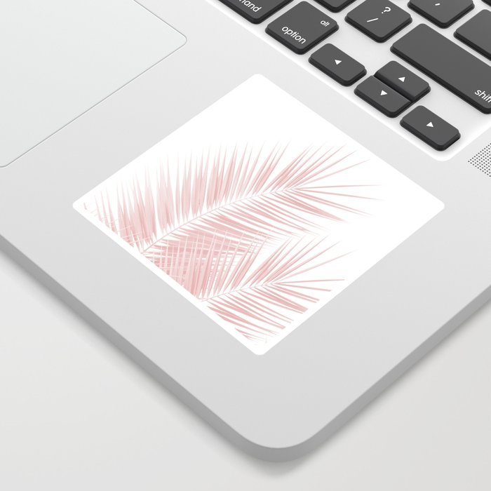 Blush Pink Palm Leaves Dream - Cali Summer Vibes #1 #tropical #decor #art #society6 Sticker