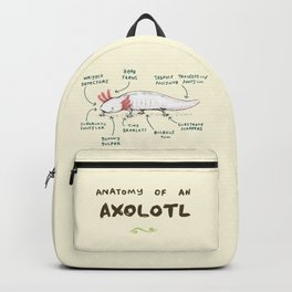 Anatomy of an Axolotl Backpack