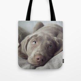 Weimaraner Puppy Love Tote Bag
