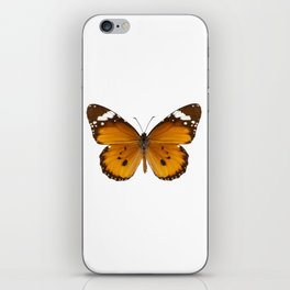 "Butterfly species danaus chrysippus ""plain tiger"" iPhone Skin"