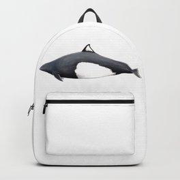 Dall´s porpoise Backpack