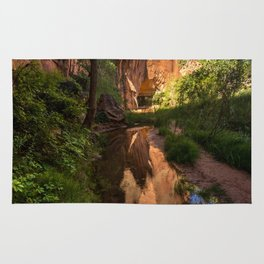 Coyote Gulch Canyon Reflection - Utah Rug