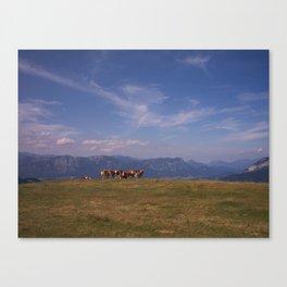 Austrian Cows Canvas Print