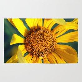 Horicon Marsh Sunflower Rug
