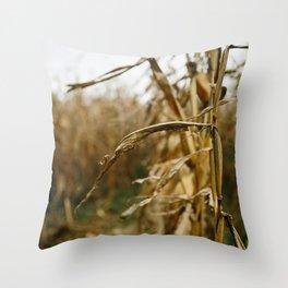 Autumn Cornstalk I Throw Pillow