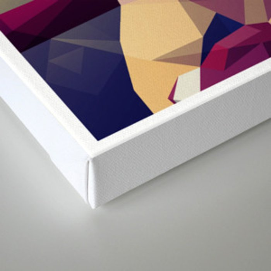 R&R Canvas Print