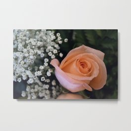 Valentine's Day Roses 13 Metal Print