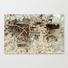 Reclaimed Canvas Print