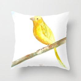 Aquarela Canarinho Throw Pillow