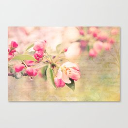 Blossoming Love Canvas Print