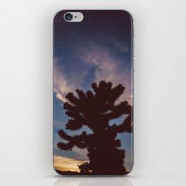 Cholla Cactus Garden VII iPhone Skin