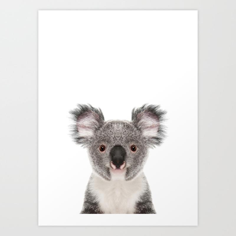 Koala Bear Art Print By Lotusprintstudio Society6