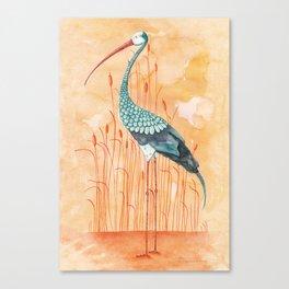 An Exotic Stork Canvas Print