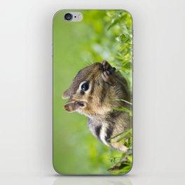 Cute Chipmunk iPhone Skin