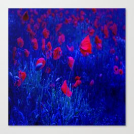 Red in Blue Canvas Print