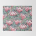 Pink Painted King Proteas on grey by micklyn