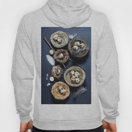 Easter background with eggs and nests Hoody