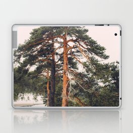The beauty of high mountain trees Laptop & iPad Skin