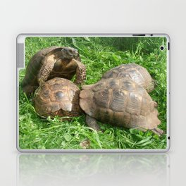 Bullied into Submission - Mating Tortoises Laptop & iPad Skin