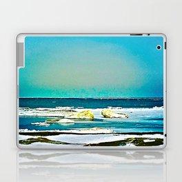 Lake Huron Winter Laptop & iPad Skin