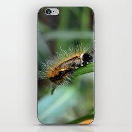 Fuzzy Caterpillar iPhone Skin