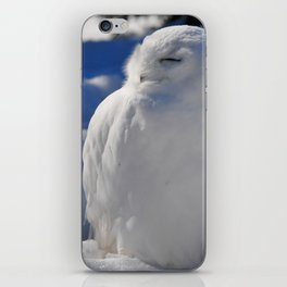 Snowy in the Snow by Teresa Thompson iPhone Skin