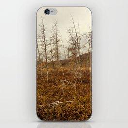 tree in the bog iPhone Skin