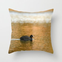 swimming trough gold Throw Pillow