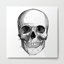 Skull 6 Metal Print