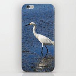 Sea Scoundrel iPhone Skin