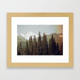 Denali  Framed Art Print